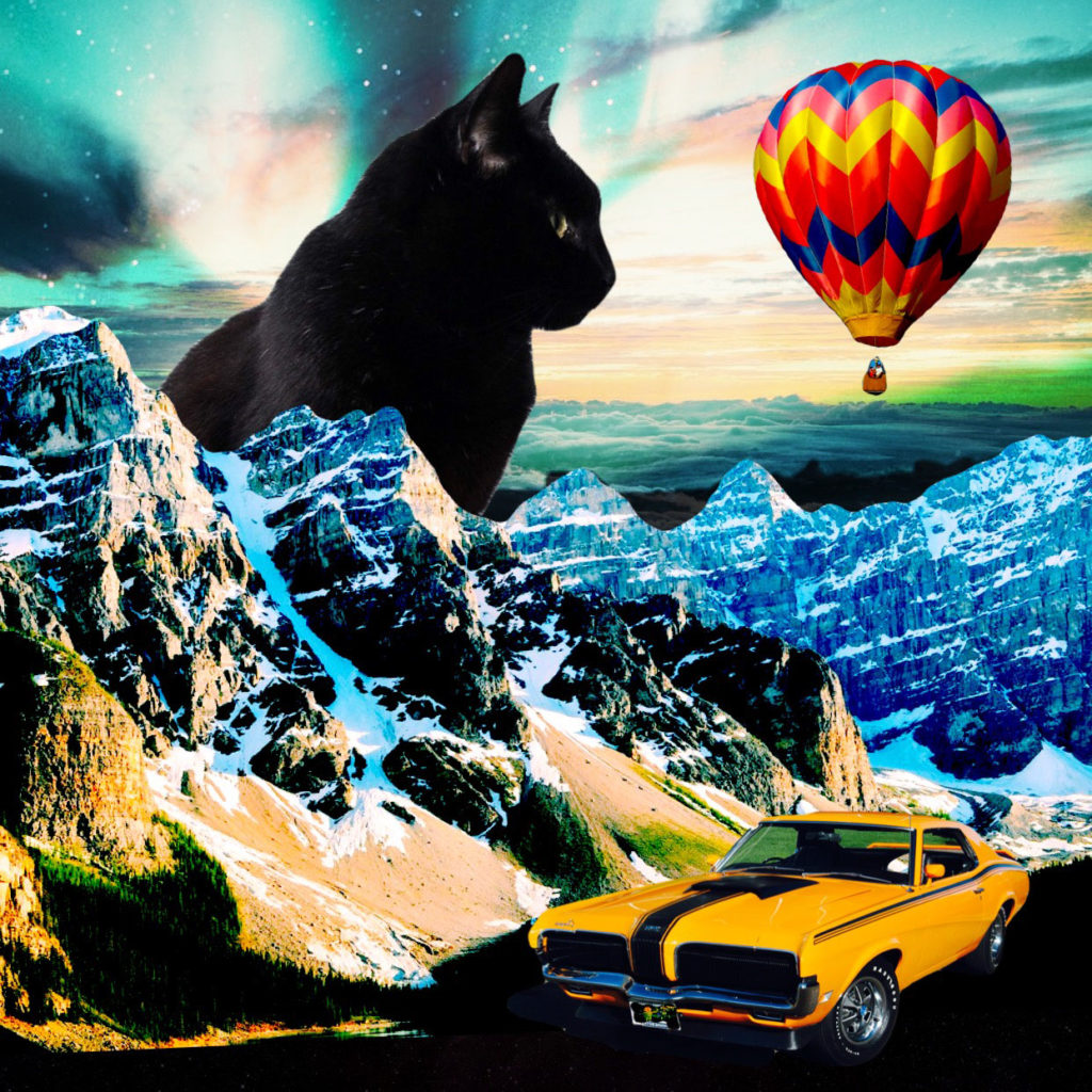 black cat in surreal landscape